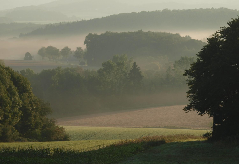 cropped-Lippe3.jpg